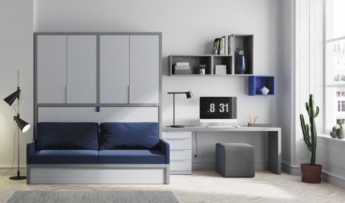 This composition with wall-bed and a sofa covers every need for this room